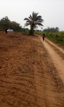 C of O Land, Caritas Luxury Home Phase 1, Off Monastery Road Behind Noveral Mall Shoprite, Sangotedo, Ajah, Lagos, Mixed-use Land for Sale