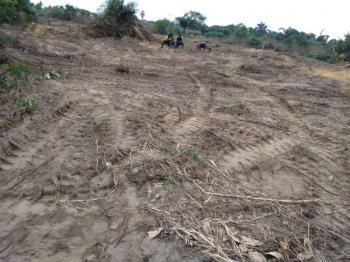 Gazette Land, Eleranigbe, Ibeju Lekki, Lagos, Mixed-use Land for Sale