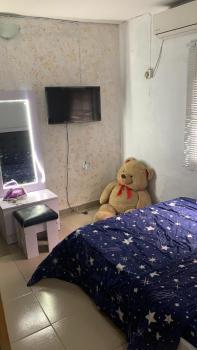 Fully Furnished Serviced Studio Apartment, Off St. Finbarrs Road, Akoka, Yaba, Lagos, Mini Flat Short Let