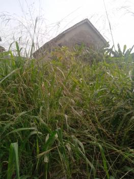 10 Acres of Dry Land with C of O, Afromedia, Along Badagry Expressway Lagos, Ojo, Lagos, Mixed-use Land for Sale