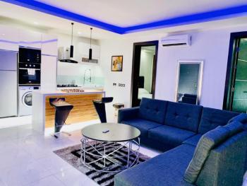 Luxury 2 Bedrooms Apartment with Roof Top Lounge, Off Kusenla Road, Ikate Elegushi, Lekki, Lagos, Flat Short Let