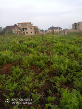 2 and Three Quarter (2.3/4)plot of Dry Land in a Commercial Area, Front of Chivita Company, Isolo, Lagos, Mixed-use Land for Sale