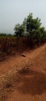 Very Cheap Plots of Land in a Developing Community, Isieke Community, Ibusa, Asaba, Delta, Mixed-use Land for Sale