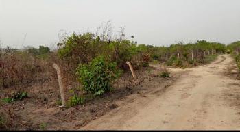 Affordable Land, Akamili Umudim, Nnewi, Anambra, Mixed-use Land for Sale