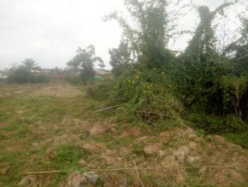 Good Plot of Land in a Nice Neighborhood, Ayegoro Area, Near Liberty Academy, Off Akala Express, Oluyole, Oyo, Residential Land for Sale