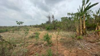 3 Plots of Land, Omi Adio, Apata, Ibadan, Oyo, Residential Land for Sale