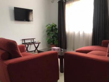 Executive Luxury 1 Bedroom Fully Serviced and Furnished Apartment Wit, Jabi, Abuja, Mini Flat for Rent