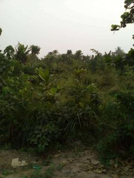 100 Acres of Land, Owode-apa Road, Near Badagry-seme Expressway, Badagry, Lagos, Industrial Land for Sale