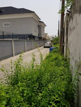 Developers 550ms Plot, Off Nevada Hotel Street, Osapa, Lekki, Lagos, Residential Land for Sale