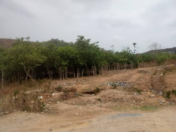 1.3 Hectares School Land, Apo, Abuja, Commercial Land for Sale