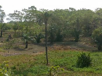 4000sqm Mixed Use Land @kabusa By Lokogoma Express, Apo, Kabusa, Lokogoma New Dual Carriage Way, Lokogoma District, Abuja, Mixed-use Land for Sale