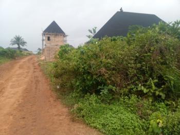 Land, Egberi Off Iyekogba Road, Benin, Oredo, Edo, Mixed-use Land for Sale