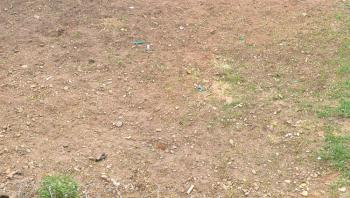 30 Acres of Land with C of O, Atan-agbara Road, Atan Ota, Ado-odo/ota, Ogun, Mixed-use Land for Sale
