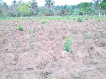 a Fenced Acre of Land with Gate and C of O, 1 Atala Road Off Ogunrun Road, Mowe Town, Ogun, Mixed-use Land for Sale