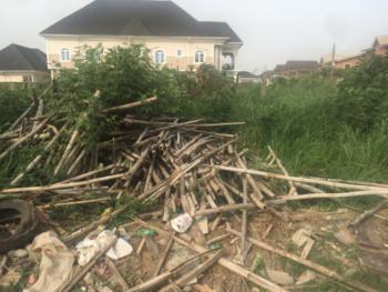Full Plot of Land Fenced/ Half Sellable, Oko Oba Gra Scheme 1 Estate, New Oko-oba, Agege, Lagos, Residential Land for Sale