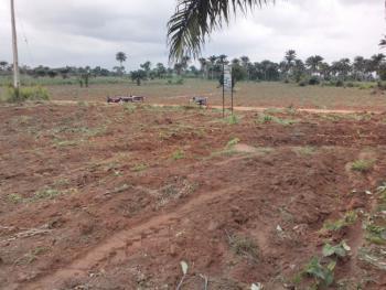 Big Plots of Land, Alapoti,idoleyi Community, Agbara-igbesa, Lagos, Mixed-use Land for Sale