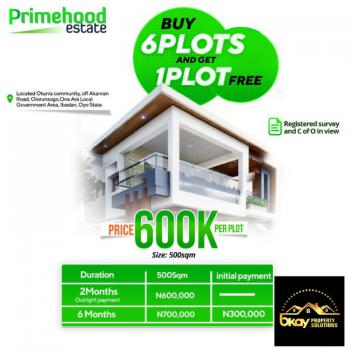Key Into This Promo Offer and Be a Land Owner This Year, Primehood Estate, Olorunsogo, Oyo, Residential Land for Sale