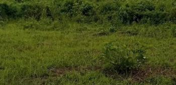 Plot of Land, Festac, Amuwo Odofin, Lagos, Residential Land for Sale