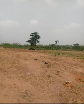 2& Half Hectares of Land for Mass Housing, Asokoro Extension, Asokoro District, Abuja, Mixed-use Land for Sale