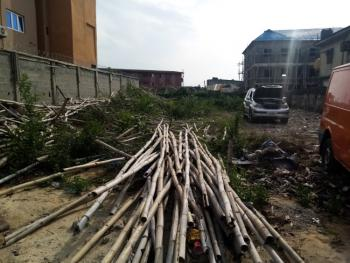 a Plot of Land, Off Babs Animashun Road By Chief Natufe Street, Surulere, Lagos, Residential Land for Sale
