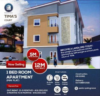 Luxury 1 Bedroom Apartment  (mini Flat) in a Serene Environment, Pedro, Gbagada, Lagos, Mini Flat for Sale