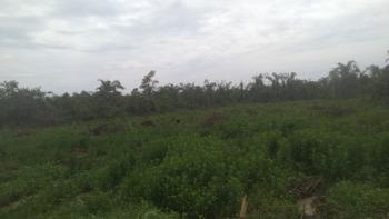 Cheap Half Plot of Land in a Good Neighborhood, Itele, Ado-odo/ota, Ogun, Mixed-use Land for Sale