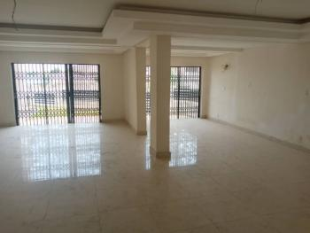 Luxury Serviced 3 Bedrooms Duplex with Bq, By Ecowas, Asokoro District, Abuja, Terraced Duplex for Rent