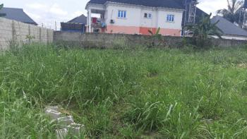 Two Plots of Perfect Shaped Land, Mfm Estate, Off Nta Road, Port Harcourt, Rivers, Residential Land for Sale