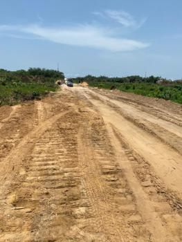 Suitable Land for Immediate Development Covered with Gazette, Igbojia, Bogije, Ibeju Lekki, Lagos, Residential Land for Sale