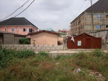 4 Units of Mini Flats, Eckanker Estate, Jakande Estate, Ejigbo, Lagos, Detached Bungalow for Sale