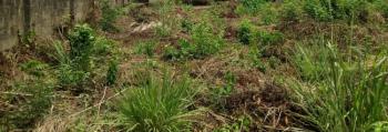 Fenced Full Plot of Land of 753 Square Meters, Close to Lekki Gardens Abraham Adesanya, Ajah, Lagos, Residential Land for Sale