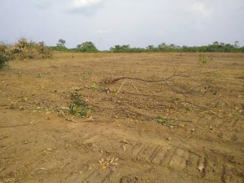 Hectares of Land with C of O, Ugwuomu Nike Close to Akanu Ibiam Intl Airport, Emene, Enugu, Enugu, Mixed-use Land for Sale