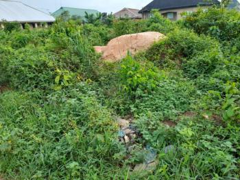 100 Feet By 100 Feet Land, Aruogba, Airport Road G.r.a, Benin, Oredo, Edo, Residential Land for Sale