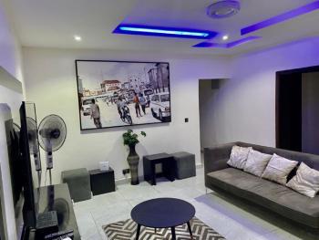 Beautiful 2  Bedroom Flat with Excellent Finishing, Freedom Way, Lekki Phase 1, Lekki, Lagos, Flat Short Let