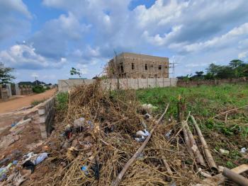 929 Sqm (100 By 100 Ft) Land, Okhuoromi, Off Irhirhi Road, Off Airport Road, Benin, Oredo, Edo, Mixed-use Land for Sale