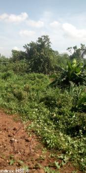 40 Acres of Prime Farmlands, Along Lagos-ibadan Expressway Isara Remo Via Sagamu, Remo North, Ogun, Mixed-use Land for Sale