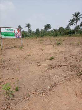 Luxury Dry Land in Primehood Estate, Off Akanran Road, Olorunsogo, Ibadan, Oyo, Mixed-use Land for Sale