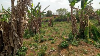 Uncompleted Poultry Farm and Block Moulding Factory, Sango Ota, Ogun, Commercial Land for Sale