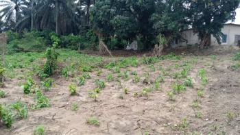 Dry Land Measuring 1,500square Meters, Ikpa Road, Uyo, Akwa Ibom, Mixed-use Land for Sale