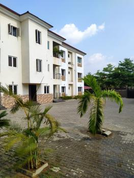 Beautiful 3 Bedroom Flat with Bq in a Nice and Secured Location, Jabi, Abuja, Flat for Rent