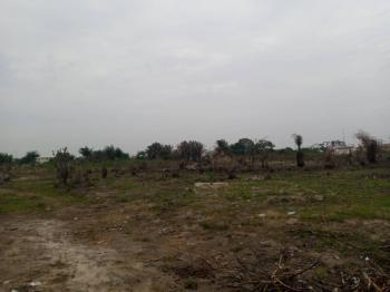 Developed Delight 2 Plots of Dry Corner Pieces Land, Crown Estate, Sangotedo, Ajah, Lagos, Residential Land for Sale