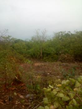 Residential Land Up for Grabs, Crd Estate Behind Amac Market, Fha (f.h.a), Lugbe District, Abuja, Residential Land for Sale