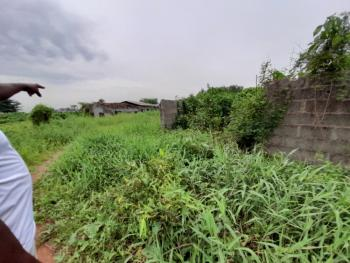 Very Prime, Well Located 500sqm Plots of Land, Soluyi, Gbagada, Lagos, Mixed-use Land for Sale