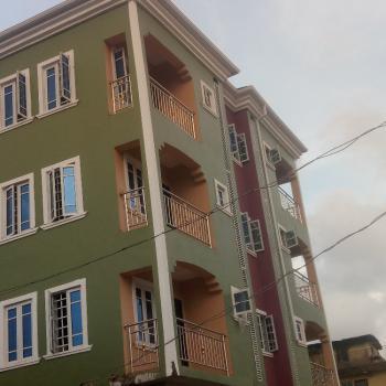 Luxury Mini-flat with 2 Toilet 2 Bathroom, Aborishade Road, Lawanson, Surulere, Lagos, Mini Flat for Rent