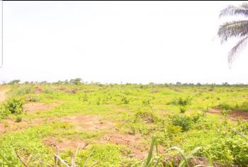 Land in a Gated and Interlocked Estate, Ibeshe, Ikorodu, Lagos, Land for Sale