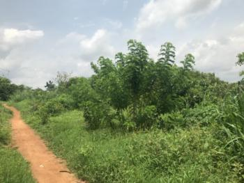 3 & Half Acres of Fenced Land and Bungalow with C of O, 1st Gate Igoba, Akure, Ondo, Mixed-use Land for Sale