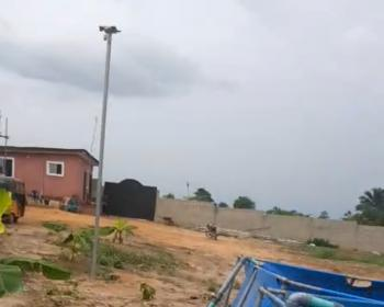 Well Established Fish Farm on 2.4 Hectares of Land, Badagry Expressway, Agbara-igbesa, Lagos, Commercial Property for Sale
