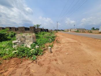 464 Sqm (50 By 100 Ft) Land, Okhuoromi, Off Irhirhi Road, Off Airport Road, Benin, Oredo, Edo, Mixed-use Land for Sale