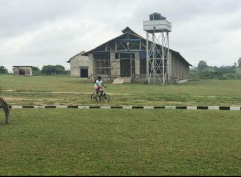 Ultra-modern Commercial Broiler Farm on Over 73 Acres of Land with Cof, New Ogbomosho Road, Ogbomoso, Ogbomosho North, Oyo, Commercial Land for Sale