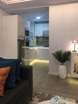 Exquisitely Furnished 1 Bedroom Apartment, Freedom Way, Lekki Phase 1, Lekki, Lagos, Mini Flat Short Let